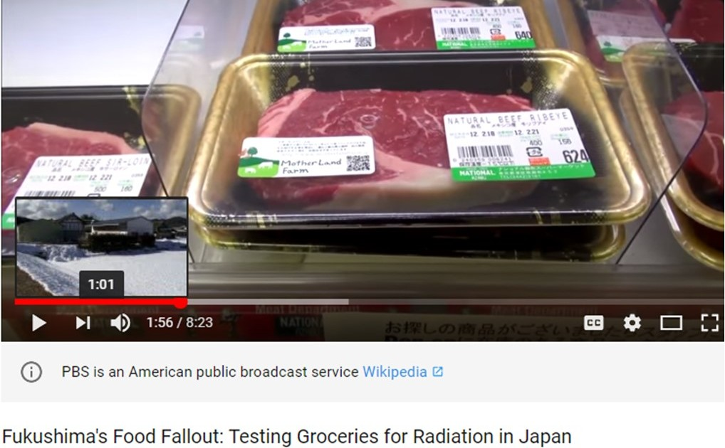 Testing for Nuclear Fallout in Supermarket Food in Japan