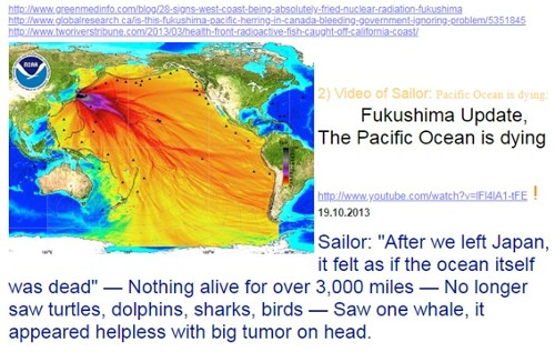 Ocean currents carry plutonium, cesium, iodine & hundreds of other radionuclides around the Pacific Basin 24x7x365 since 2011 & practically, for Eternity. Migrating whales, dolphin, tuna, salmon swim beside the floating plutonium & other radionuclides ...to what end? ...cancer, leukemia, heart failure, bleeding lesions & tumors, mutated offspring ...all to the drum beats of nuclear apologists, who claim nuclear energy is safe & clean.