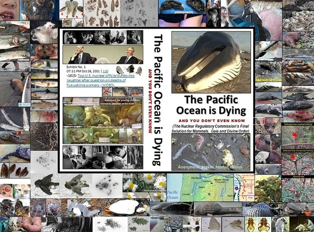 The Pacific Ocean is Dying and You Don't Even Know ...we are in the Sixth Great Extinction of Life on Planet Earth -- courtesy of Fed interest rate banking families valuing money over people, animals, all living things, and the Life Force. They value profits over people and it's time to stop the Fed interest rate banking families (and their apologists) who own and enslave us and murder us and all living things.