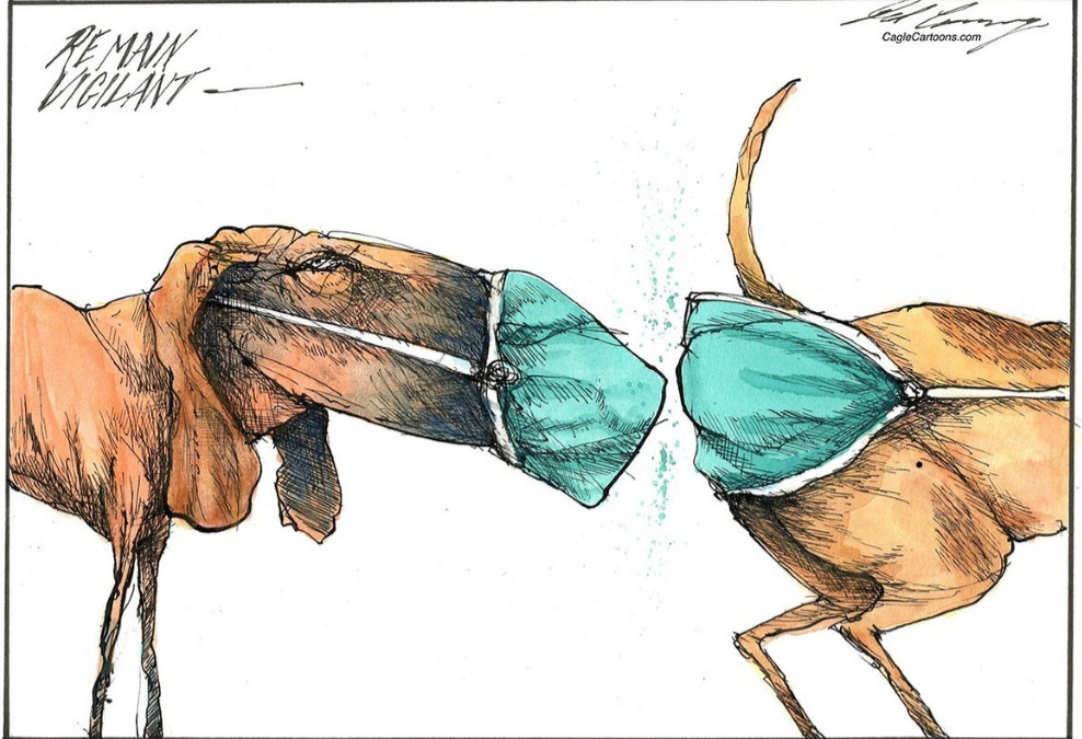 An artists impression of the usefulness of face masks & butt masks in Portland & around the world of dogs. Woof woof. Can you identify this breed of dog?